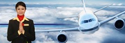 Aviation Placement Agency
